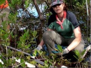 Peat Coring in Belize
