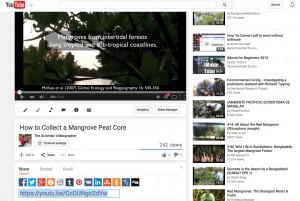 screenshot_youtube_mangrovecoremethod